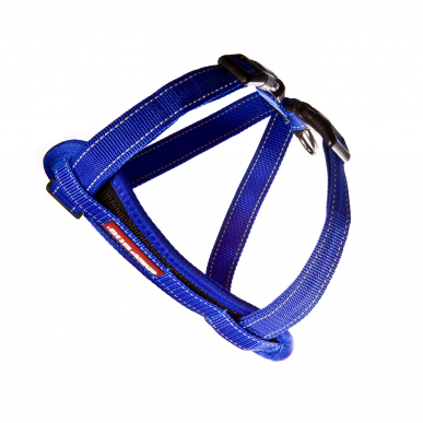 Chest-plate-Harness-Blue_lowres