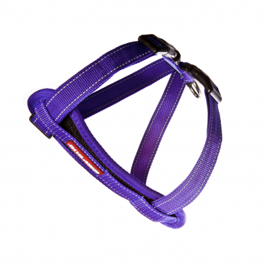 Chest-plate-Harness-Purple_lowres