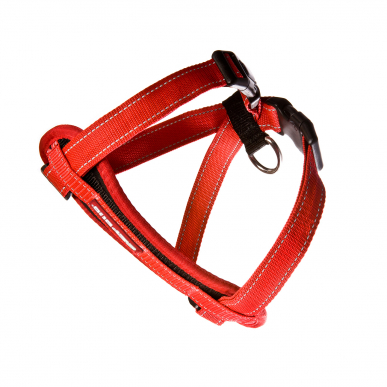 Chest-plate-Harness-Red_lowres