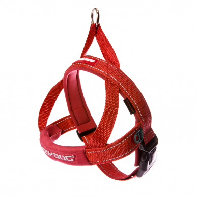 Quick Fit Harness Red